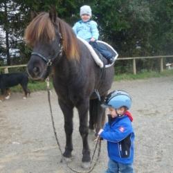kinder-pferde