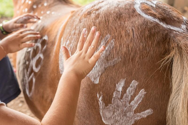 Kinder bemalen Pferd