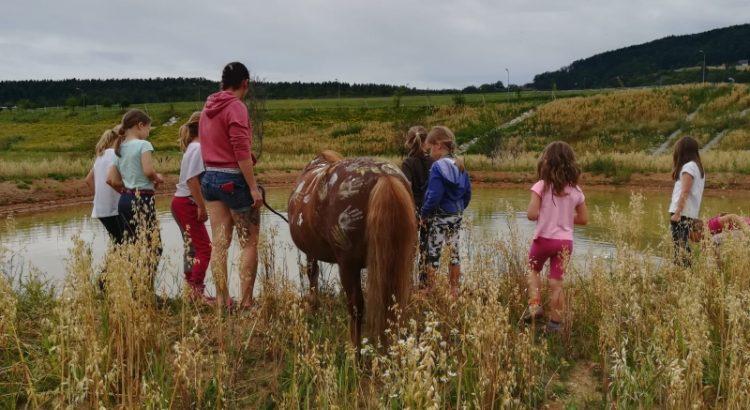 Kinder & Pferde - Sommerwoche